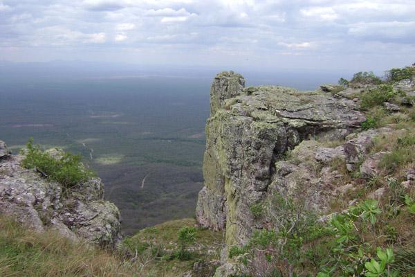 Imagenes de: Biodiversidad